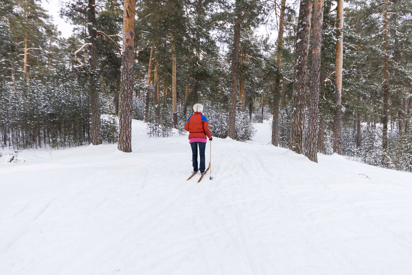 Cross Country Skiing Trail near Dzerzhinsk, Nizhegorodskaya Oblast – Russia