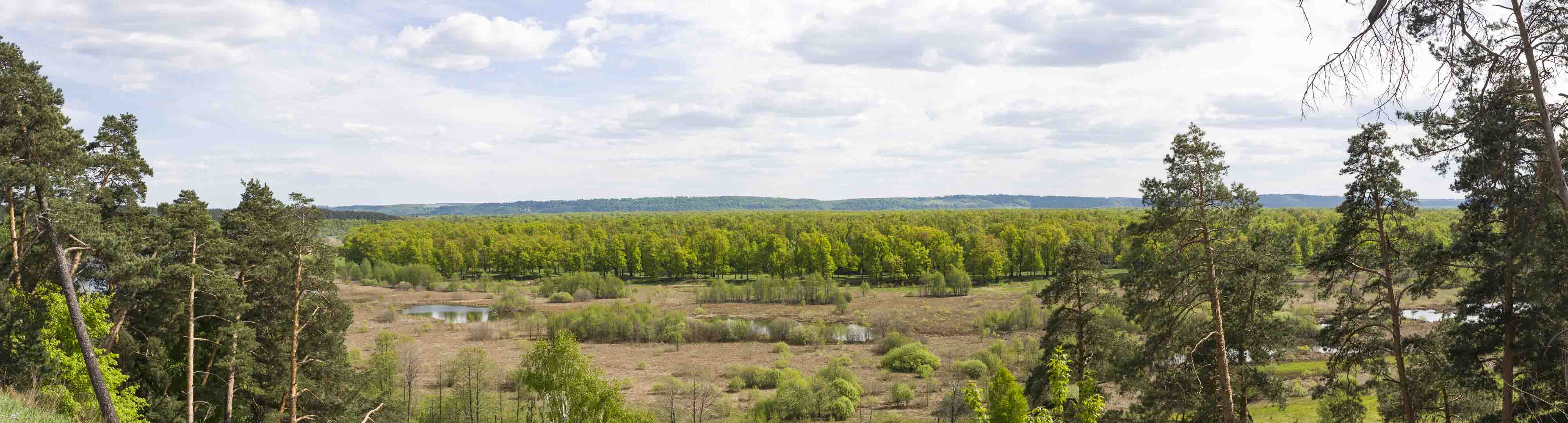 Scenic View near Oka River in Dzerzhinsk, Nizhegorodskaya Oblast – Russia
